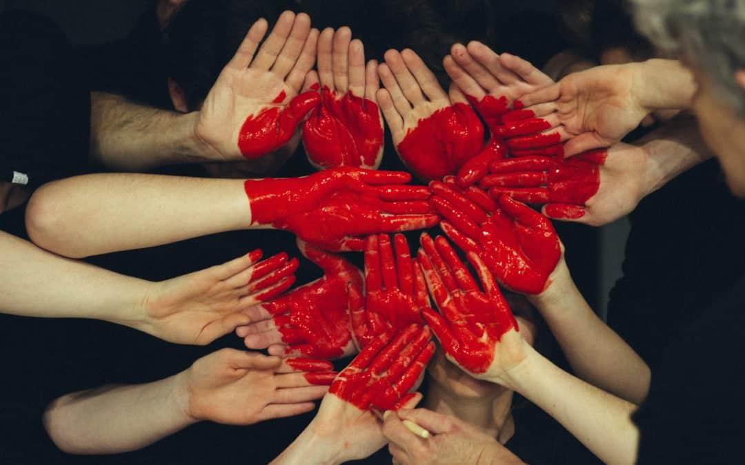 Offre Solidarité Novembre 2020